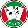 Pokerclub Austrian Bullets